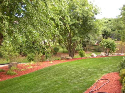 OutdoorArtsLandscape thuelandscaperenovation plantswaterfeature 009