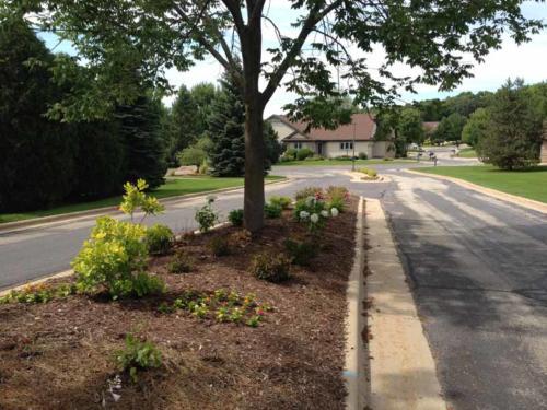 OutdoorArtsLandscape seminolvillagefront entriesplantings 008