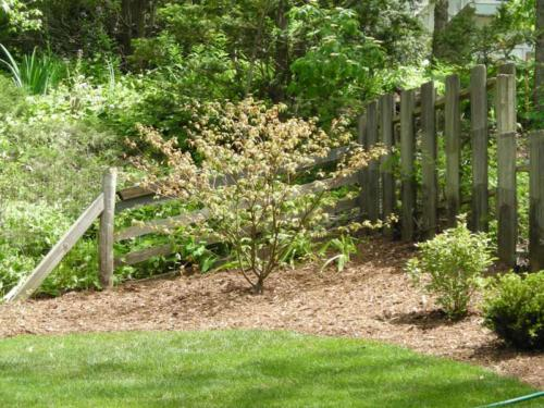 SHOREWOOD PLANTINGS & BEDS