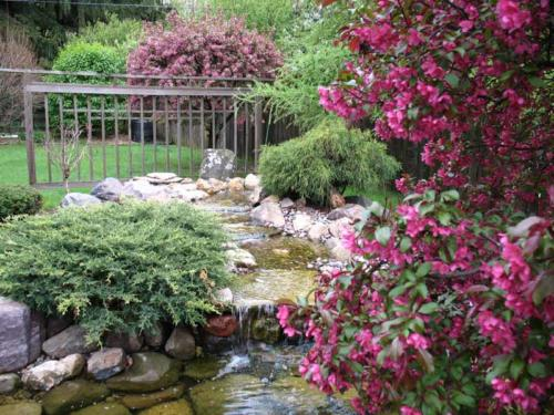 WATER FEATURE / PLANTING / COLOR