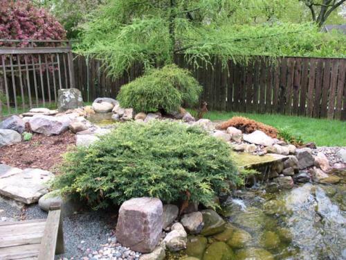 OutdoorArtsLandscape BuhmanWaterFeature PlantingColor 004